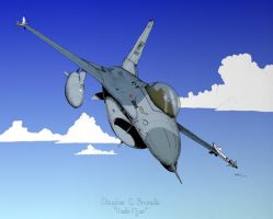 Colored F-16C by MaulerMech