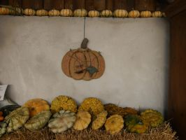 autumn decoration by ingeline-art