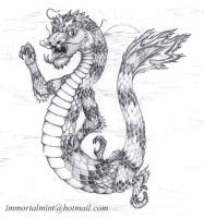 Chinese Dragon by immortalmint