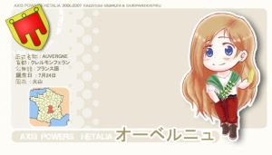Auvergne Profile ID Card (Hetalia OC) by GueparddeFeu