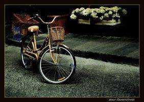 bicycle by nurtanrioven
