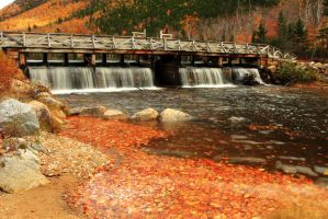 Autumn Dam by Celem
