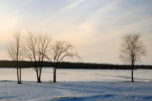 Frozen St-John river 2 by LucieG-Stock