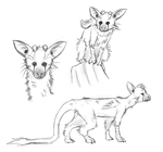More Trico Sketches by IcelectricSpyro