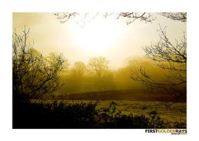 First Golden Rays by dkj1974