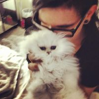 Kitten and Skrillex by amy291000