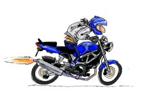 me on my suzuki sv 650 by TheUncle
