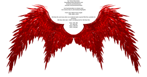 Angel/Devil Wings Free Stock 8k Resolution 15 by TMProjection