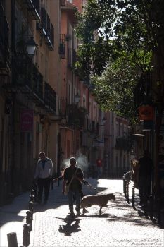 Shadows And Light In Madrid by rici66