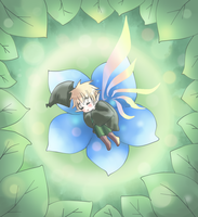 APH - FLower bed by Mi-chan4649