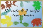 maple_conifer by AnastasieLys