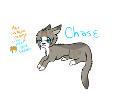 Chase by Foxxyheartz
