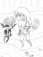 Link and Midna by maxinethebean