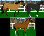 [ENTRY] Stallion Parade at PPS by BleachTheNight