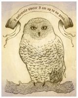 Hedwig by Bumble-a-Bee