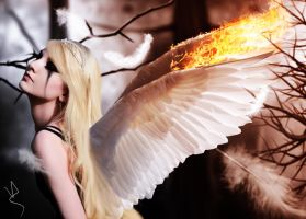 Burned Angel by viniciusalv