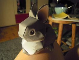 papercraft bunny by clankid