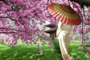 Under the Cherry Trees by cazcastalla