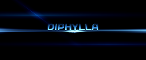 diphylla by diphylla