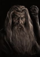 Gandalf The Grey by Heksagon