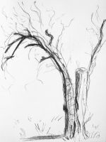 Dead Pear Tree by NeroUrsus