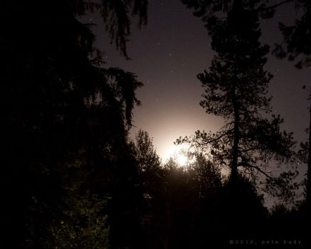 Moonrise over Brightwood by indi-is-conan