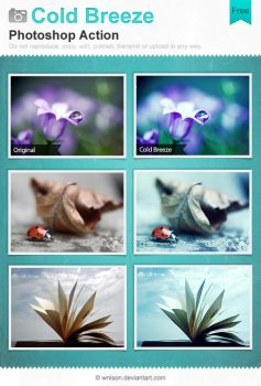 Cold Breeze Photoshop Action by Wnison