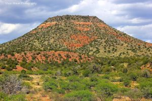 Arizona Beauty by GlassHouse-1