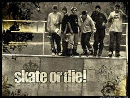 Skate or Die... by untrustworthY-