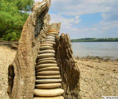 driftwood and stone composition by tamas kanya by tom-tom1969