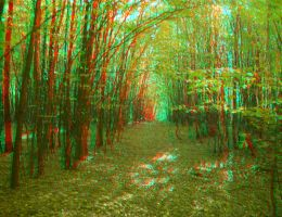 Overgrown forest 3D anaglyph by yellowishhaze