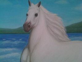 The Horse White 24 by eduaarti