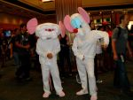Pinky and the Brain by SenbonGirl7