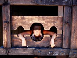 In the Stocks by Estel