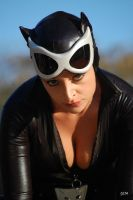 Catwoman by mesocoscia