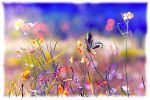 Touch of Spring by dianar87