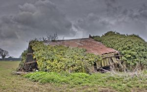 Shack Hdr by Phoenix1100