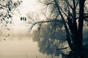 Reflection and mist by saltov-man