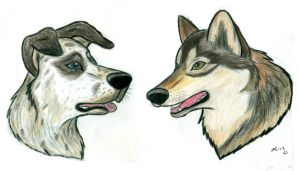 The Dog and the Wolf by wahyawolf