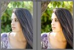 Perfect Skin Lightroom preset by elentasa