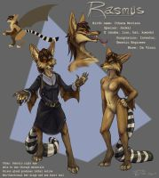 Rasmus Character Sheet by FablePaint