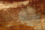 Texture 243 by Malleni-Stock