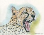 Cheetah by GuitarWars