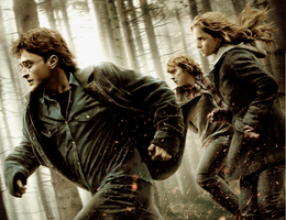 HP7 Wallpaper Coloring 1 by profil10