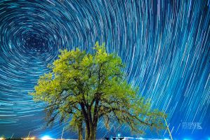 Startrails by Bl4ck-and-wh1te