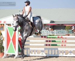 National Dressage and Jumping_99 by CalyHoney
