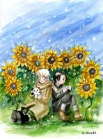 APH Sunflowers by MaryIL