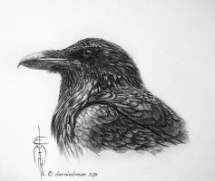 crow_drawing by BernieBman