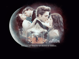 Bella and Edward. by Spenne