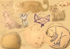 Cats scetches by kotenokgaff